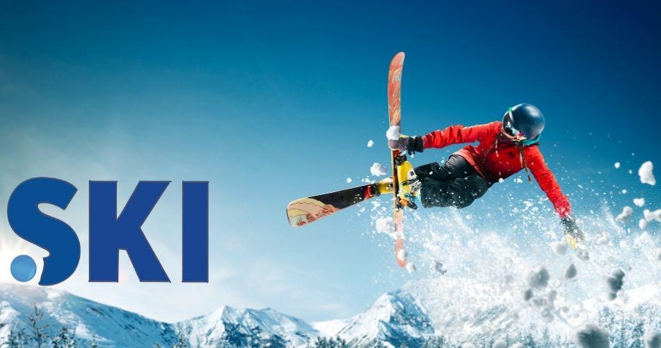 dot-ski-domain